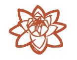 Logo Zenzero Erboristeria